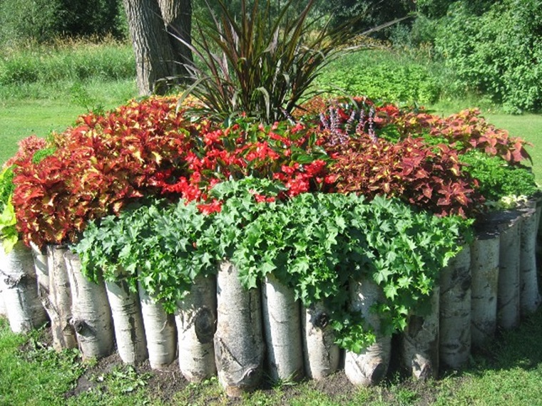 bordure-in-legno-per-aiuole-piante