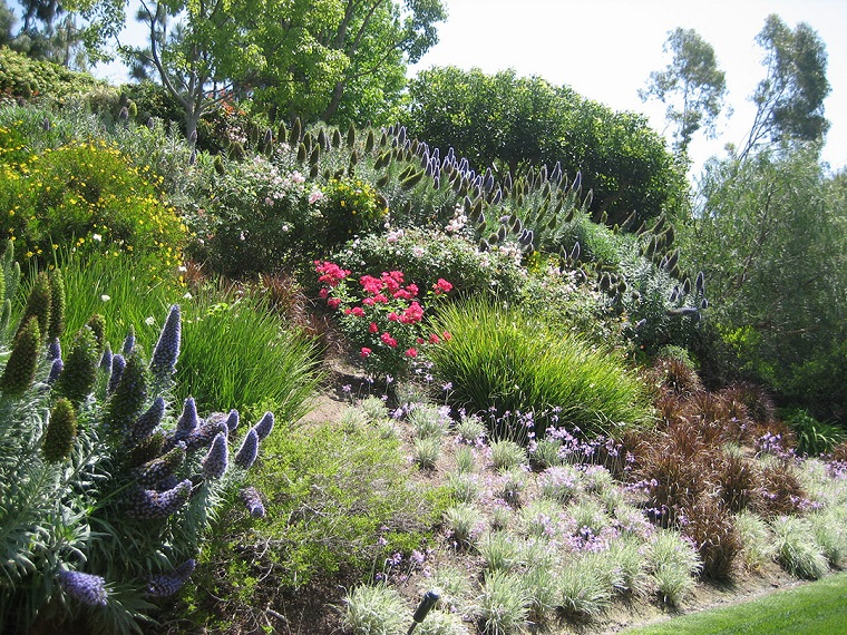 giardini-in-pendenza-idea-piante-grasse