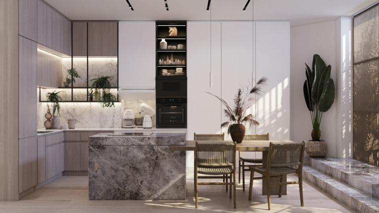 cucina moderna isola centrale tavolo da pranzo decorazione pianta verde da appartamento