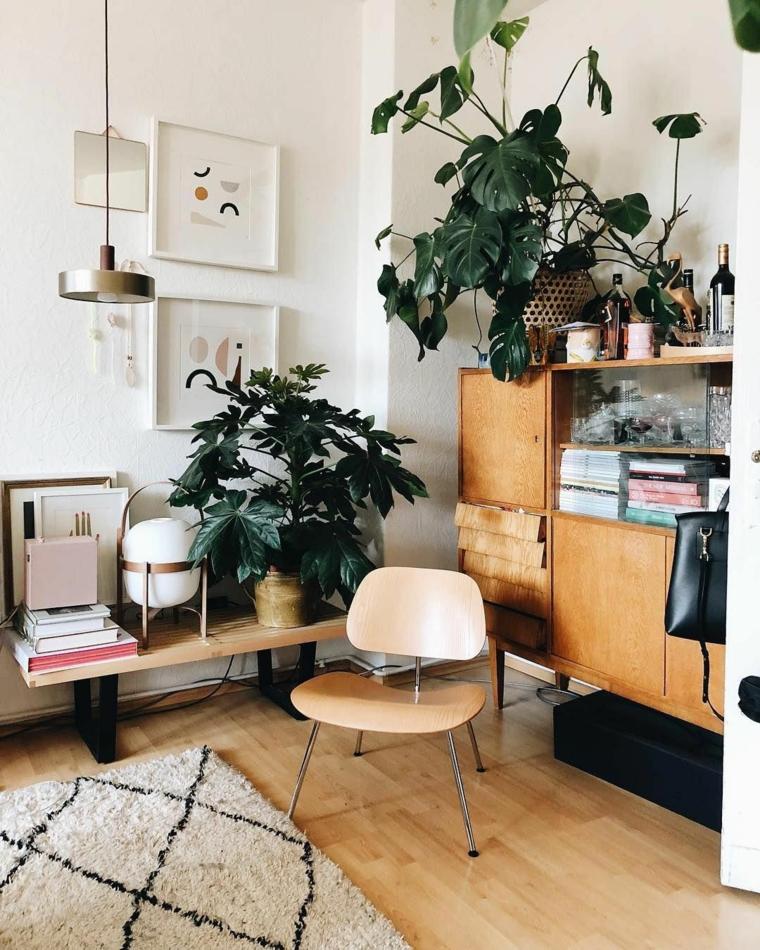 cucina soggiorno open space 50 mq mobile legno vasi piante appartamento verde sedia tappeto