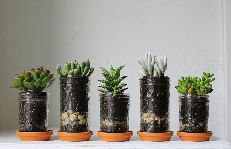 fioriera-fai-da-te-barattoli-succulente