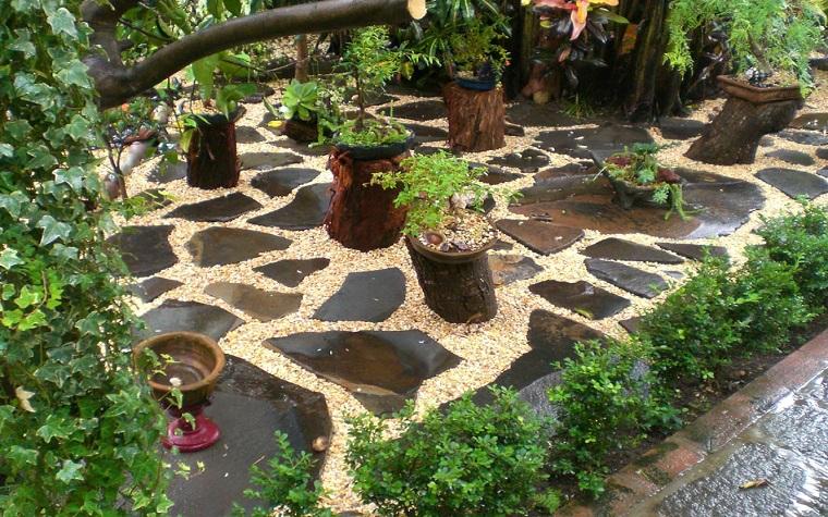 giardini-con-sassi-proposta-bonsai