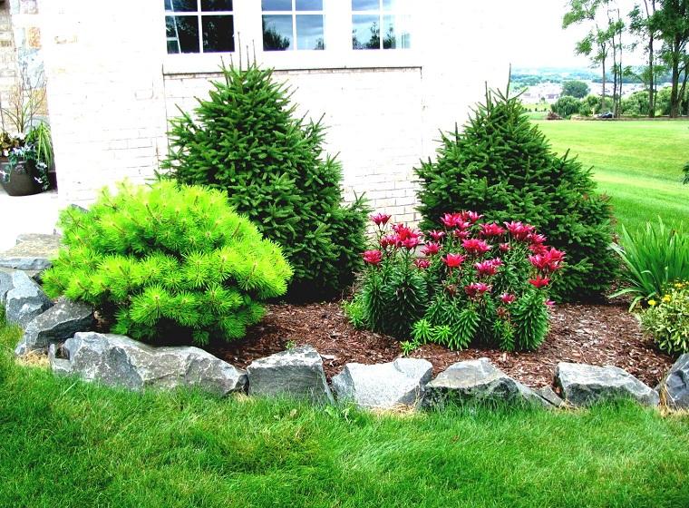 giardino-con-sassi-alberi-sempreverdi
