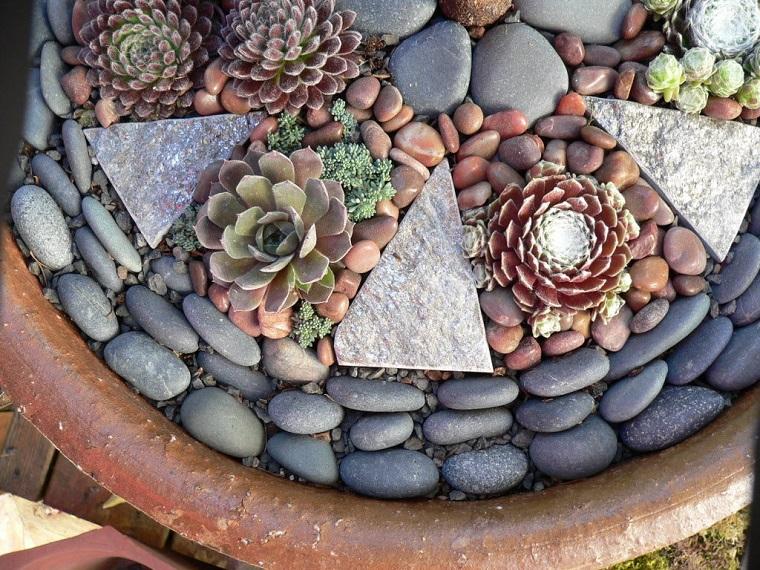giardino-con-sassi-piccole-piante-grasse