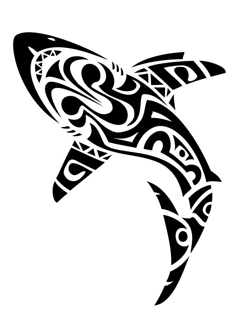 tatuaggio-maori-idea-squaletto