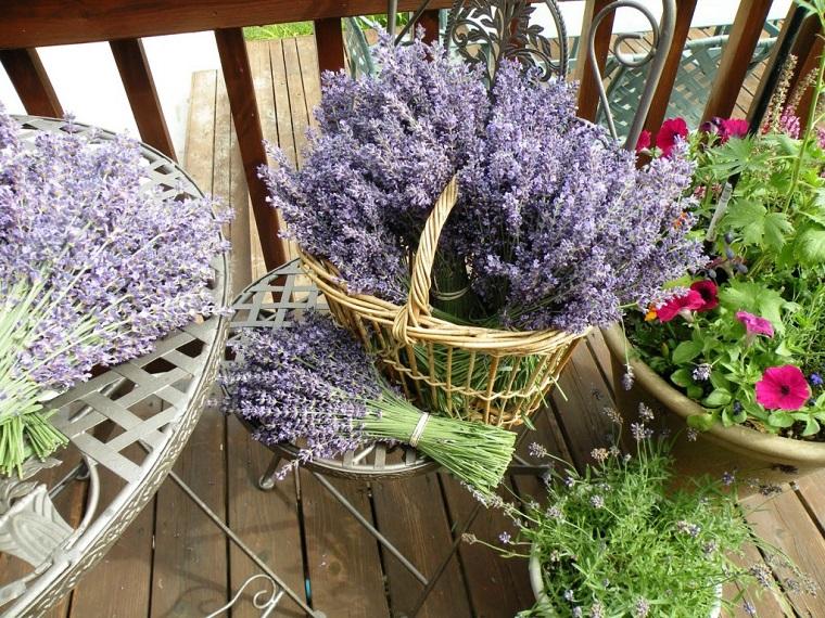 balconi fioriti-cesto-lavanda