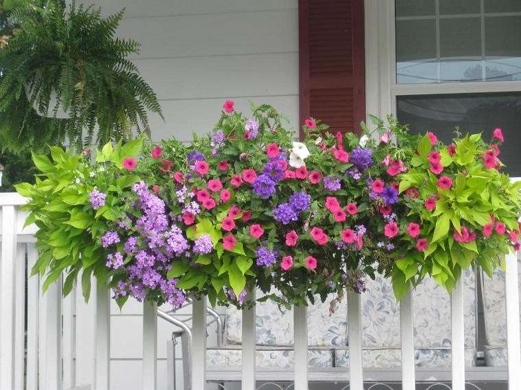 balconi fioriti-eleganti-piante-fiori