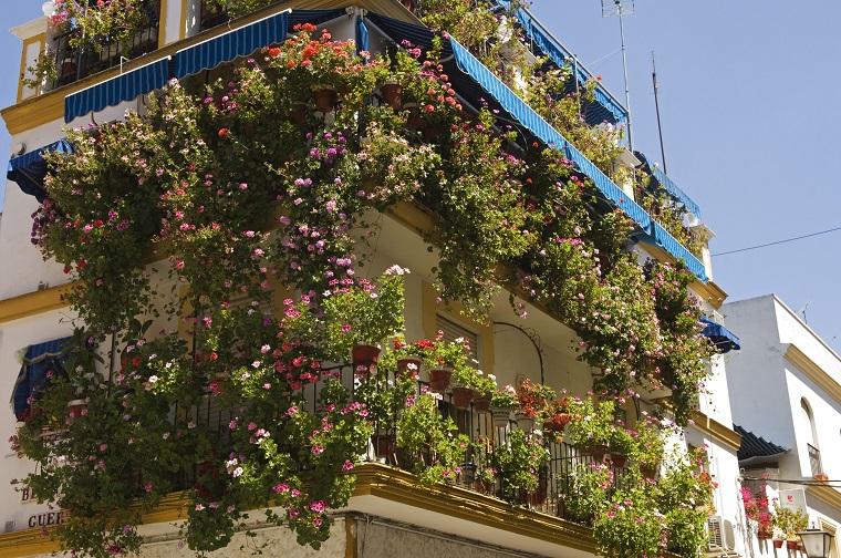 balconi fioriti-fiori-piante-cascata