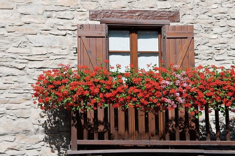 balconi fioriti-geranio-rosso-rosa