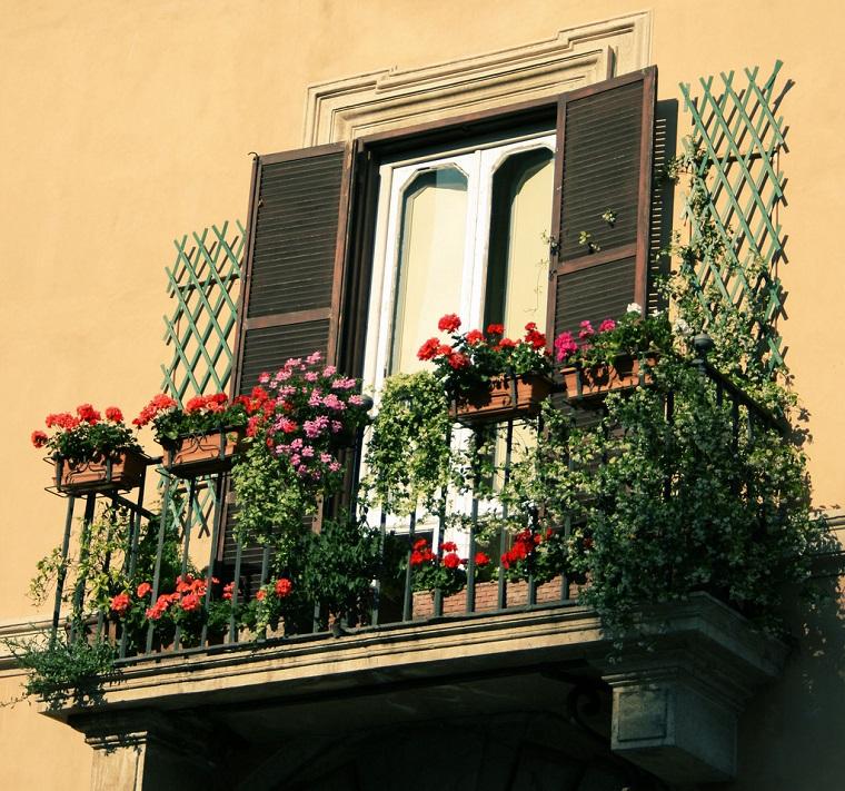 balconi-fioriti-piante-sempreverdi-gerani