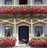 fiori-da-balcone-idea-raffinata