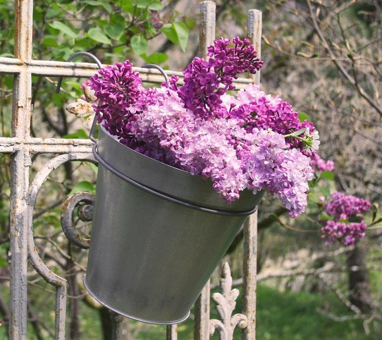 fiori-da-balcone-vaso-zinco