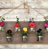 idee-fai-da-te-casa-fiori-legno
