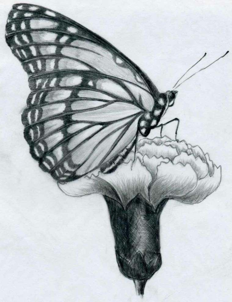Top ▷ 90 disegni a matita fra i più belli e sorprendenti con svariati  NE81