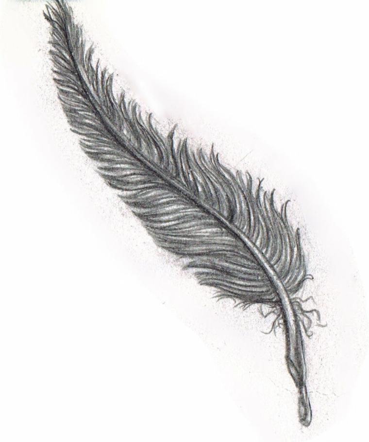 90 disegni a matita fra i pi belli e sorprendenti con for Disegni da copiare a matita