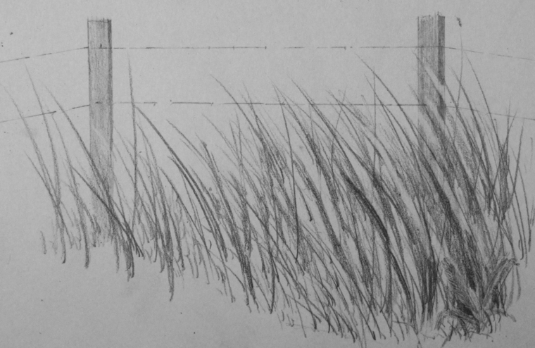 Interessante disegni paesaggi a matita facili my36 pineglen for Immagini facili da copiare