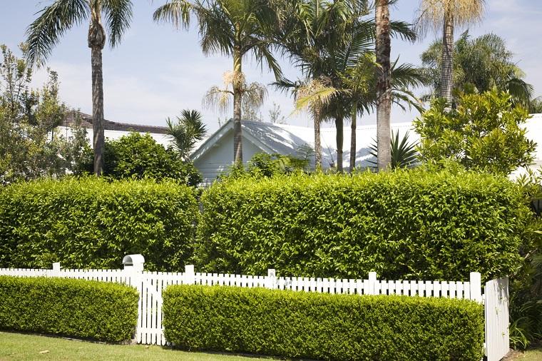 recinzione-giardino-siepi-due-altezze