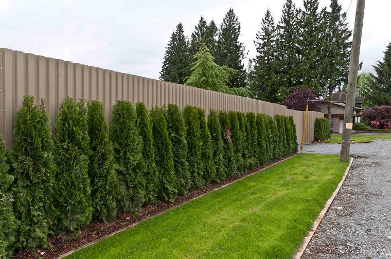 Recinzioni giardino idee fra legno metallo e piante archzine