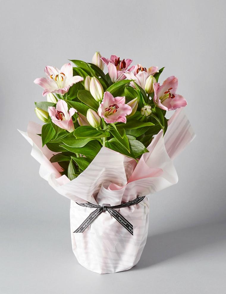 regali-natale-splendida pianta-fiori-rosa-interno-vaso-decorato-carta-rosa-nastro-grigio