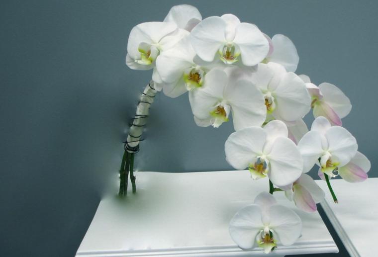 bouquet-sposa-orchidea-bianca-dimensioni-ridotte-forma-cascata
