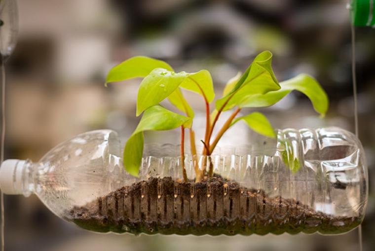 idee-creative-riciclo-bottiglia-plastica-trasparente-vaso-orizzontale-apertura-zona-superiore
