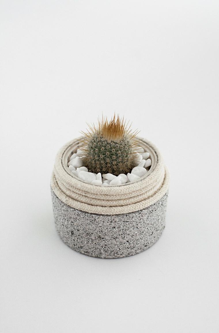 Riciclare oggetti da buttare, barattolo di crema vuoto utilizzato come vaso per un mini cactus