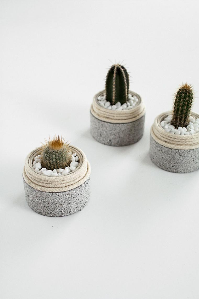 Lavoretti creativi da fare a casa, barattoli di crema vuoti utilizzati come vasi per piante grasse