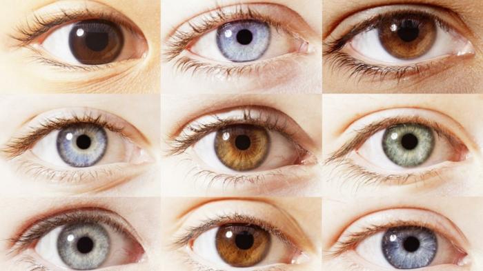 1001 idee significato del colore degli occhi e personalit - Occhi colori diversi ...
