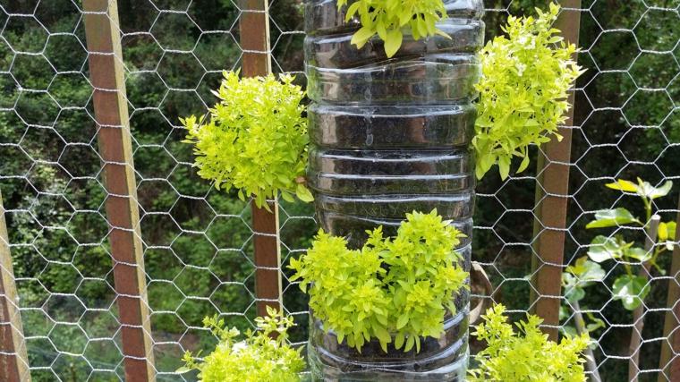 riciclaggio-creativo-bottiglia-plastica-realizzare-giardino-verticale-appendere-rete-metallica