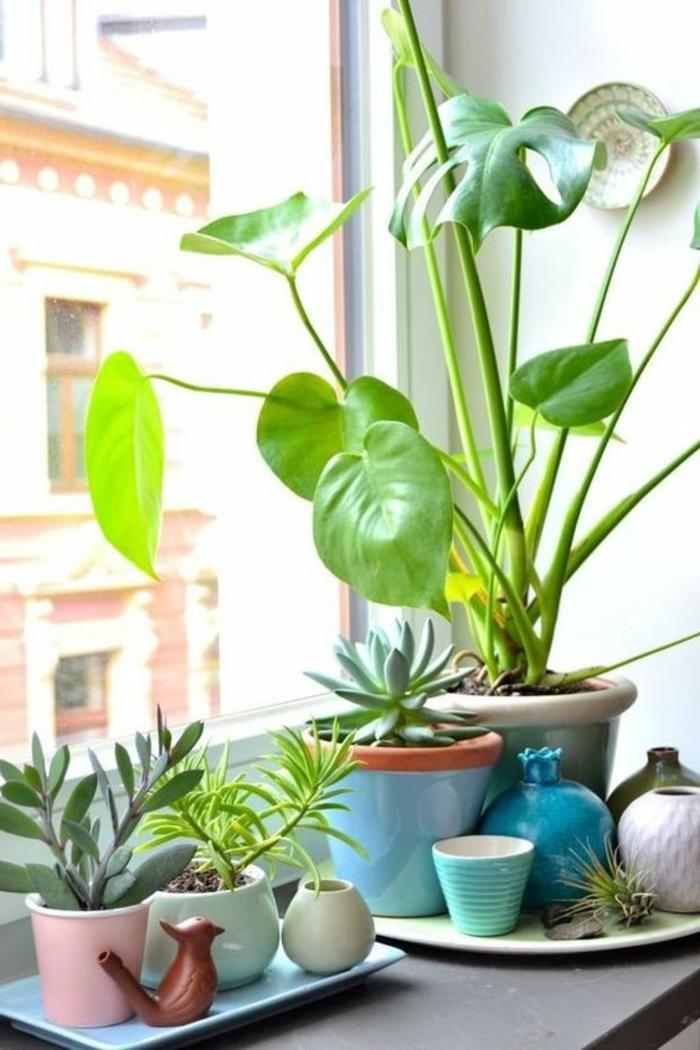 Addobbi-fai-da-te-vasi-piante-da-appartamento-fiori-davanzale-finestra-decorazione