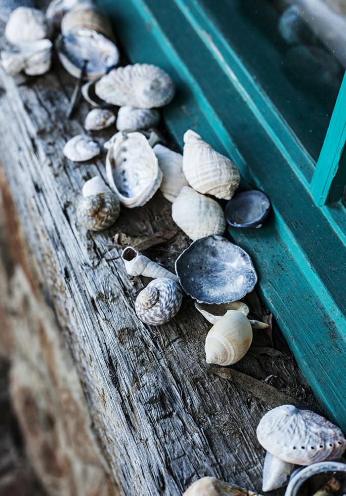 decorazioni-marine-davanzale-finestra-legno-stile-rustico-addobbi-conchiglie-mare-idea-fai-da-te