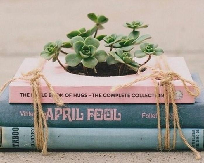 idee-regalo-per-migliore-amica-dei-libri-legate-insieme-corda-trasformati-piccolo-vaso-piante-grasse