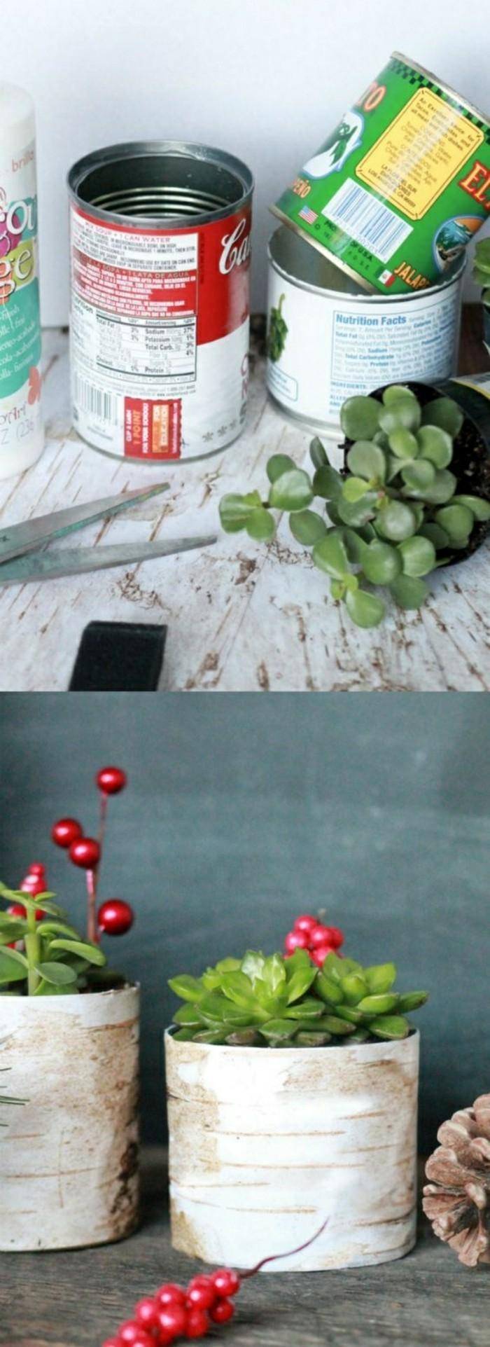 idee-storage-conservazione-piantine-barattolo-latta-decorato-forbici-bacche-rosse-piantine-grasse