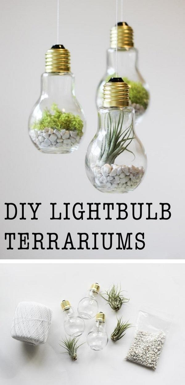 piccolo-terrarium-giardino-miniatura-piantina-sassolini-idea-creativa-riciclaggio-creativo-lampadine