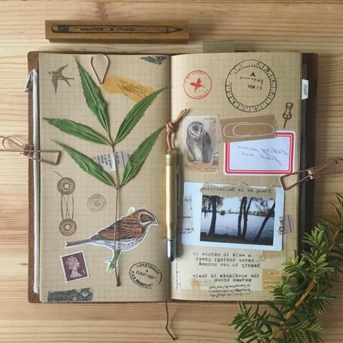 quaderno-di-viaggio-erbario-pianta-verde-bricolage-uccello-foto-crtolina-timbro-disegni-a-matita-citazioni