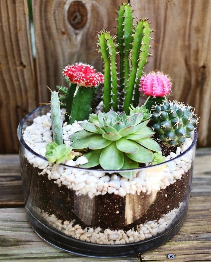 regalo-migliore-amica-realizzare-fai-da-te-vasetto-vetro-interno-piante-grasse-sassolini-bianchi