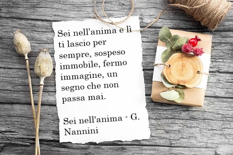 Frasi d'amore e una citazione di Gianna Nannini nella sua canzone Sei nell'anima