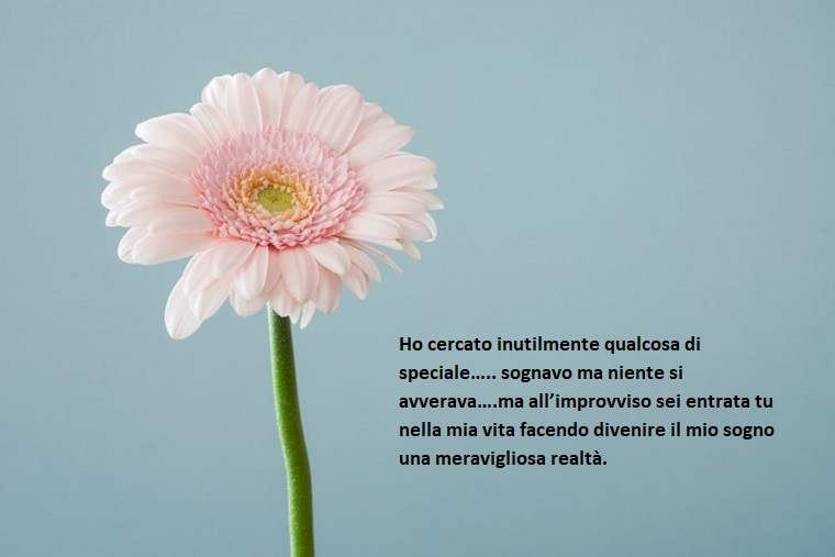 Buon San Valentino amore mio con un'idea bigliettino d'amore con stampato un fiore