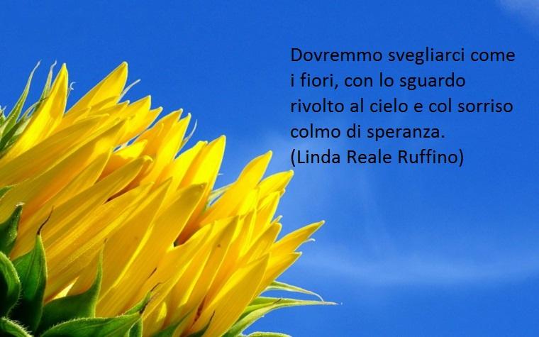 scritta da linda reale ruffino, una proposta di buongiorno frasi belle che invita a svegliarsi come fiori rivolti al sole