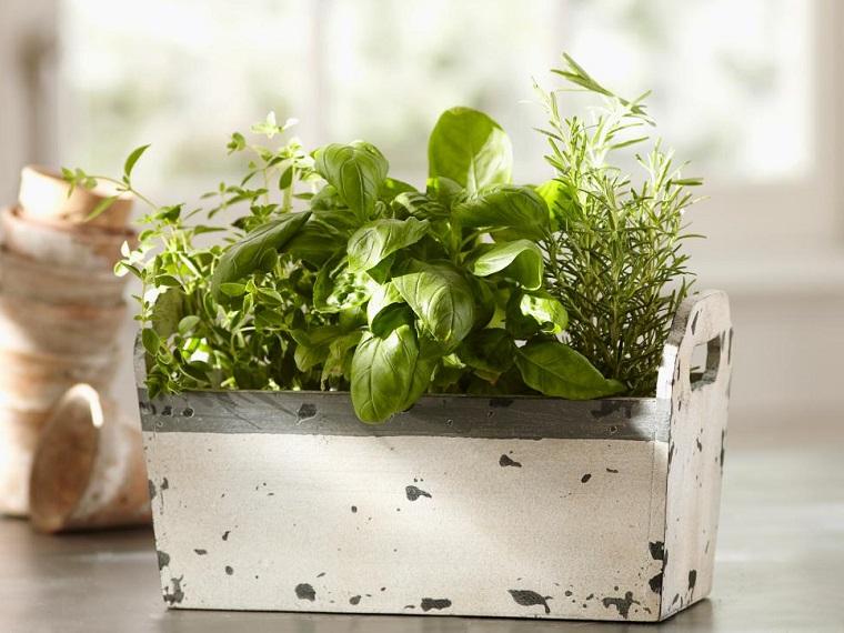 Erbe aromatiche come basilico e rosmarino coltivati in un vaso di legno rustico