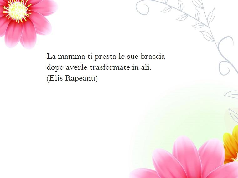 Citazione di Elis Rapeanu, decorazioni immagini con fiori rosa, sfondo di colore bianco