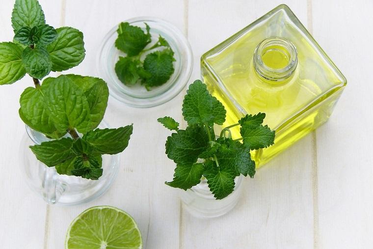 Metodo di cura basato su essenze vegetali, foglie di menta, bottiglia di vetro con olio all'interno