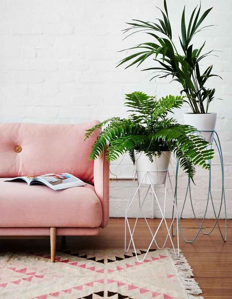 Piante da appartamento, decora la tua casa, arredamento con divano rosa, tappeto bianco con motivi geometrici, due piante sempreverdi