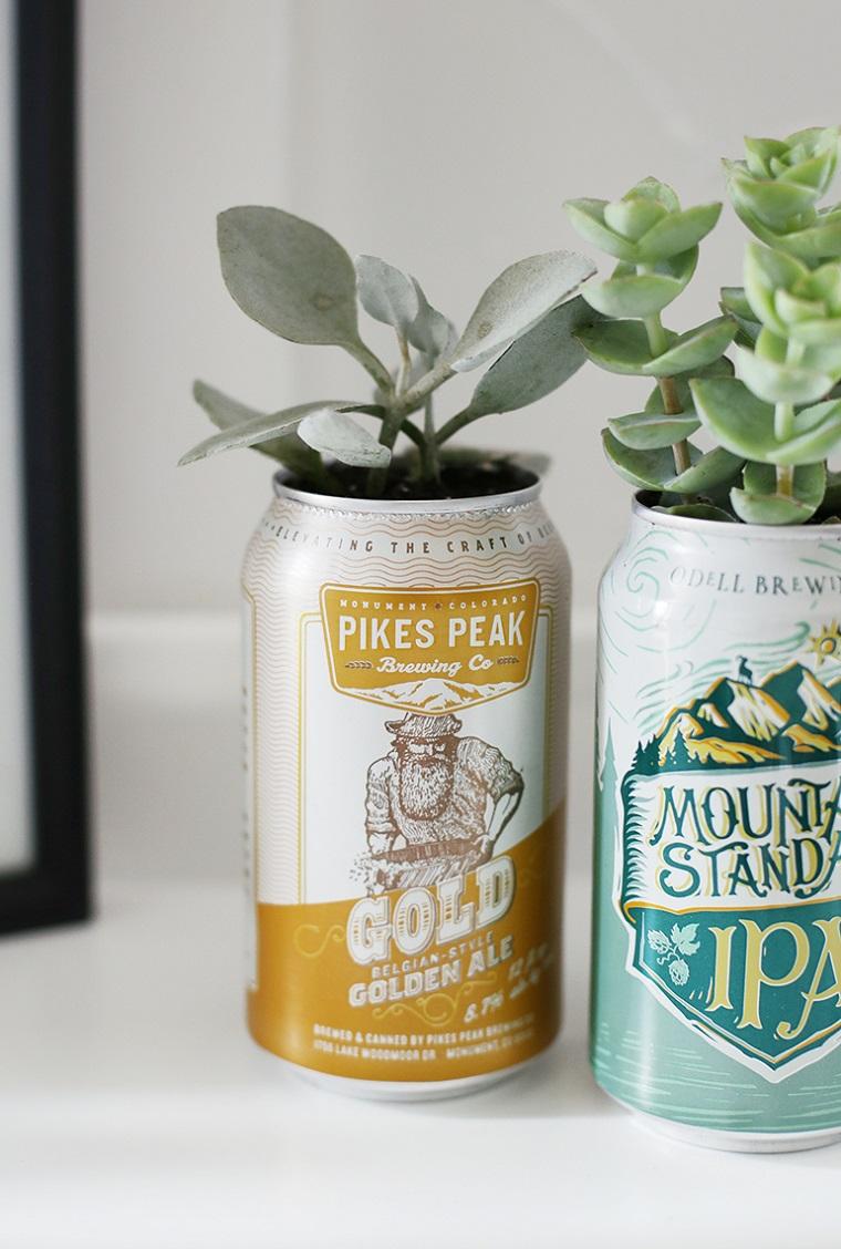 piante grasse in lattine di birra regali festa del papà fai da te