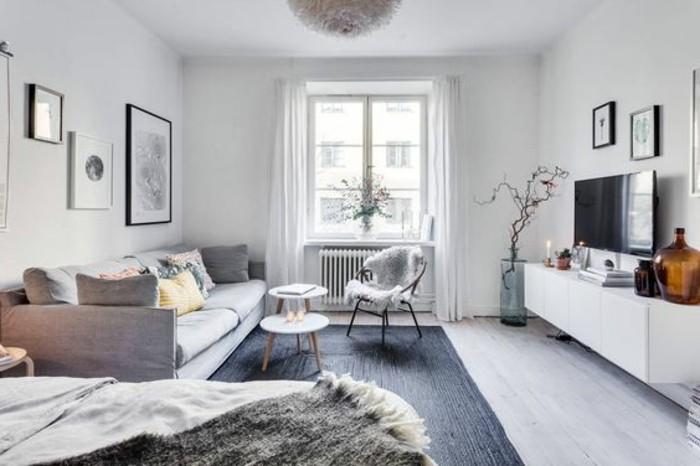 un divano grigio lineare e un tappeto rettangolare da un lato, un mobile tv dall'altro, alcune idee piccola casa