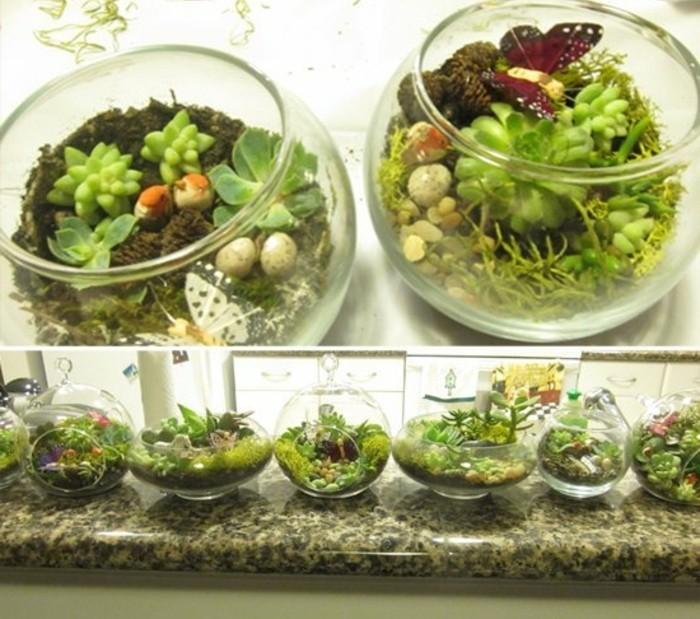 Regali fatti a mano, giardino in miniatura, contenitori di vetro tondi per piante grasse