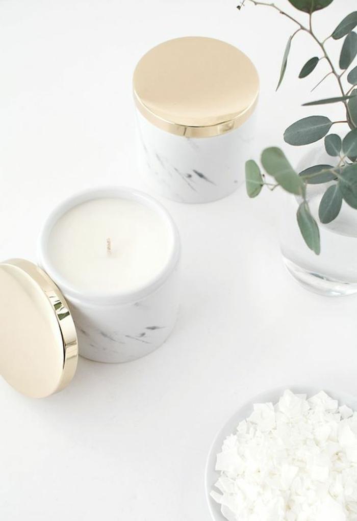 Idea sul come fare candele profumate, cera di colore bianco e una pianta con foglie verdi in vaso