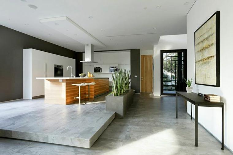 open space dal design moderno e lussuoso con una zona cucina dotata di grande isola attrezzata in legno
