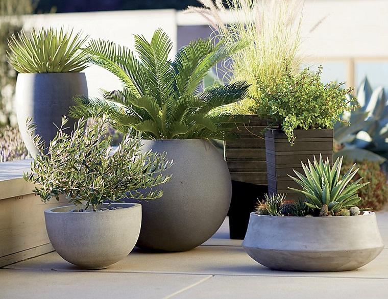 1001 idee per piccoli giardini suggerimenti da copiare for Piante grasse ornamentali