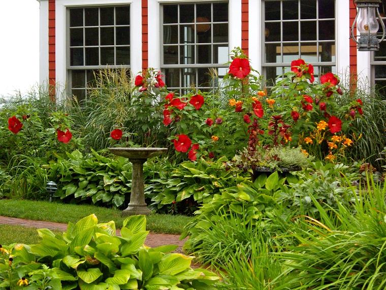 Trendy free trendy piccoli giardini piante alberi e for Piccoli giardini ornamentali